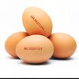 Намериха от опасните полски яйца в Бургас