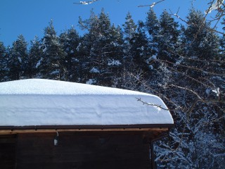 Tsanev@dir.bg | Снегът в Тревненския Балкан | 1 харесвания