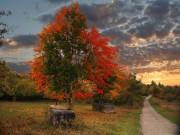 Есен......