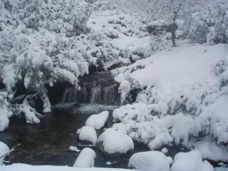 Jpeovska@abv.bg | бяла зима | 48 харесвания