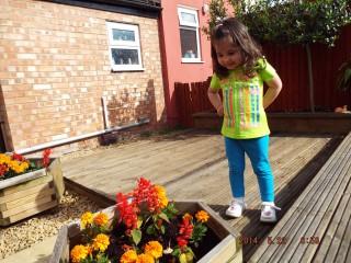 Danisa78@abv.bg | В дворчето в Англия любимото ни внучеЯси се радва на цветенцата | 9 харесвания