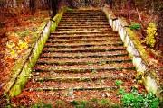 Azur | Follow me.. | 145 харесвания