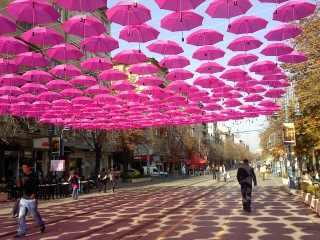 Sabidi | Витошка в розово | 51 харесвания