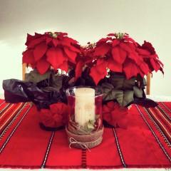 ива87 | украса за Нова Година 2014 | 12 харесвания