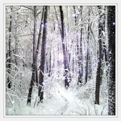 Aivaceda | Зимно вълшебство | 27 харесвания