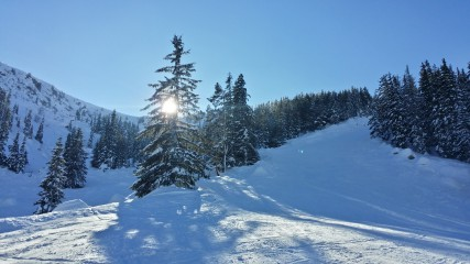 BVMunchausen | Срещу слънцето | 16 харесвания
