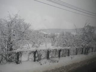 Smurfette | България през зимата | 39 харесвания